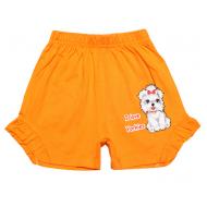 20-102202 Шорты для девочки, 4-8 лет, оранжевый