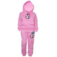 17-371781 Спортивный костюм для девочки с начесом, 3-7 лет, розовый