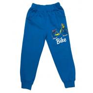 17-6912221 Брюки для мальчиков, 6-9 лет, голубой