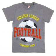 20-102113-88 Футболка для мальчика, 4-8 лет, серый
