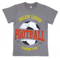 20-102113 Футболка для мальчика, 4-8 лет, серый