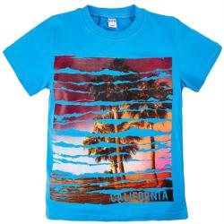 "20-103104 ""California"" Футболка, 8-12 лет, голубой"