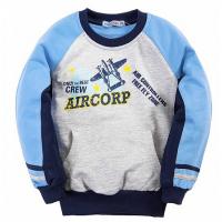 20-49005 Толстовка для мальчика, 2-6 лет, голубой.серый