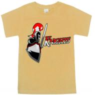 """15-590105 """"Рыцарь"""" футболка для мальчиков 5-9 лет, бежевый"""