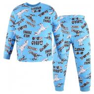 47-378115 Пижама для мальчика, 3-7 лет, голубой