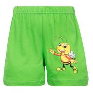 "11-141402 ""Small Insect"" Шорты для мальчиков, 1-4 года, зеленый"