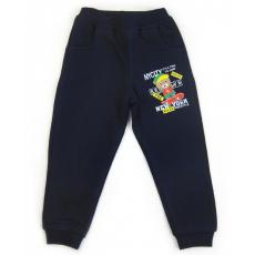 17-9101 Брюки для мальчиков с карманами, начес, 2-5 лет, т-серый
